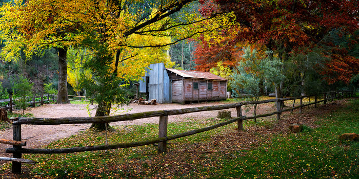 Autumn at Pickering's Hut
