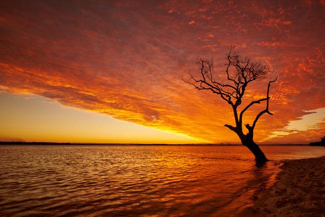 That Bribie Sunset Golden Hours Photos